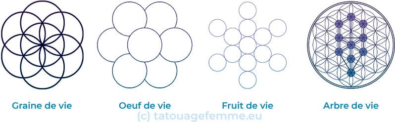 Arbre de vie fruit fruit oeuf