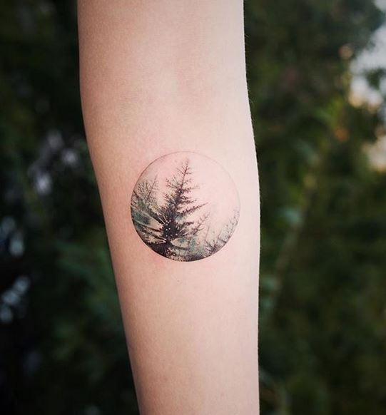 Tatouage Avant-bras En Pin