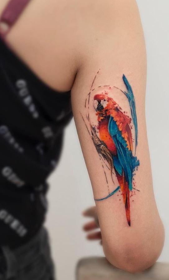 Tatouage de bras de perroquet aux couleurs vives
