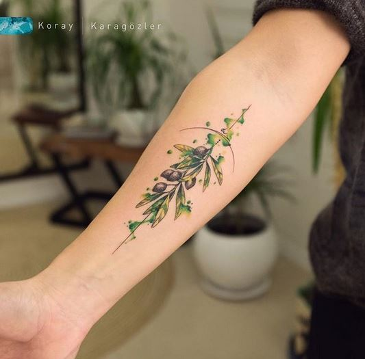 Tatouage avant-bras aquarelle olives